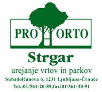 prohorto (1)
